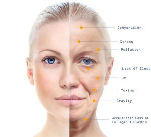 Anti Aging Skin Care Graphic